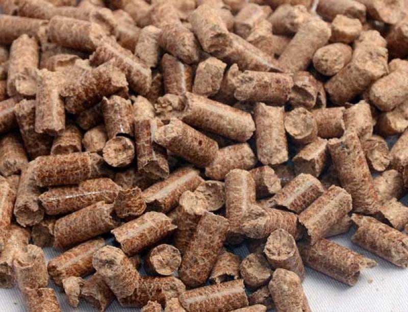 Biomassa Untuk Ekonomi Kerakyatan