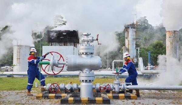 Menakar IPO PT Pertamina Geothermal Energy (Bagian I)