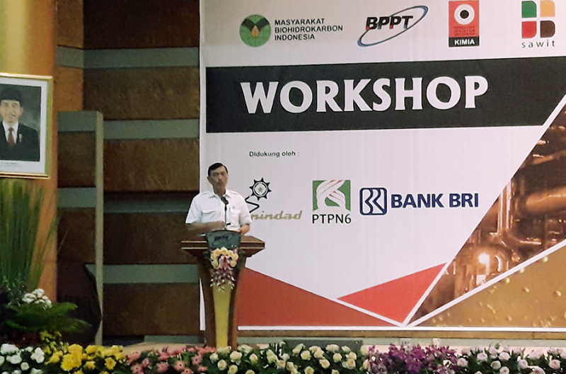 Menko Luhut: Indonesia Harus Menjadi Pemain Global Diversifikasi Sawit