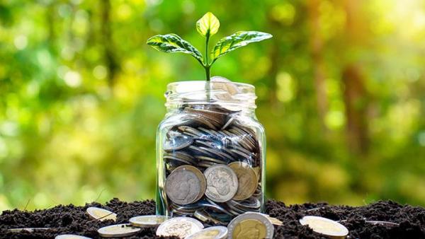 Pacu Investasi Pemerintah Turunkan Tarif PPh Bagi Investor Domestik