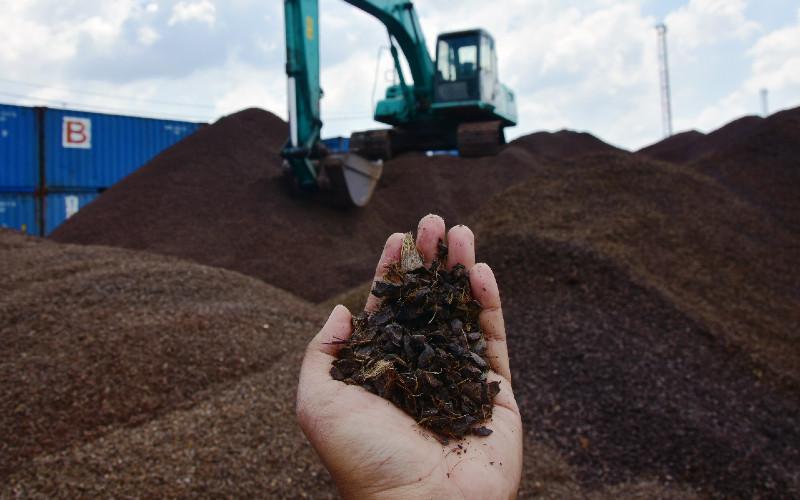 Perusahaan Ini Memilih Ekspor Cangkang Sawit Meski Dalam Negeri Butuh Untuk Co-Firing